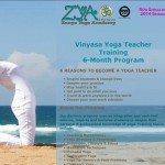 Zenya Academy Website